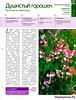 Комнатные и садовые растения от А до Я 60 15