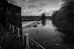 Kirkstall Abbey Water (Phil Marsden Photography) Tags: blackandwhite abbey leeds kirkstall