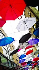 Umbrellas (Dave G Kelly) Tags: street ireland dublin colour vertical umbrella outdoors photography photo day multicoloured umbrellas