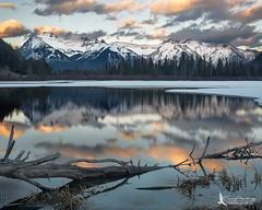 Fairholme Range, Vermilion Lakes (Tim Harding) Tags: winter canada mountains landscape alberta banffnationalpark vermilionlakes