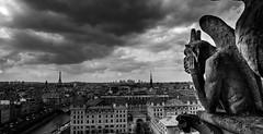 CSP_2014-HDR (Sharada Prasad) Tags: blackandwhite bw paris france towers notre dame chimera gorgoyle