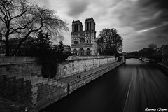 Notre Dame de Paris (karmajigme) Tags: travel blackandwhite paris france monument monochrome architecture nikon noiretblanc notredame