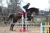 038P_402 (Lukas Krajicek) Tags: czechrepublic kon zeo koně humpolec parkur vysocinaregion michaelakadlecová