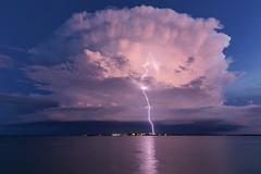 Knock 'em down (Louise Denton) Tags: cloud storm mushroom weather nt darwin lightning anvil northernterritory wetseason