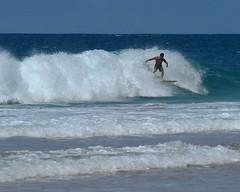 DSC_4319 e5 Banzai (J Telljohann) Tags: hawaii surf oahu surfer banzaipipeline