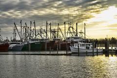 Fishing Fleet At Viking Village (SupersonicNJ) Tags: sunset boats pier boat newjersey fishing dock ship ships nj lbi longbeachisland jerseyshore vessels vikingvillage