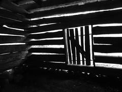 2713  P900  airy barn (jjjj56cp) Tags: bw abandoned barn tn hiking historic p900 pioneer gsm lightanddark greatsmokymountains oldbarn greatsmokymountainsnationalpark trailside logbarn homesteader messerbarn jennypansing
