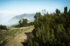 Madeira Pico Ruivo (michaelbeyer_hh) Tags: madeira picoruivo