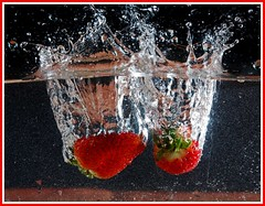 Strawberries! (peterdouglas1) Tags: strawberries watertank tabletopphotography