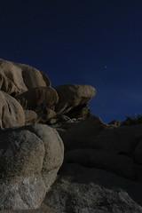 Joshua Tree, 1:47AM (rarefruitfan) Tags: park moon tree night long exposure nps joshua national
