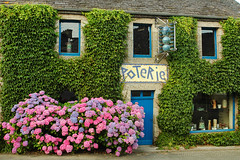 Lampaul-Guimiliau (Brittany, France) (clodio61) Tags: old plant france flower color building photography brittany europe day exterior outdoor bretagne pot climbing pottery hydrangea typical creeper poterie artcraft finistere lampaulguimiliau