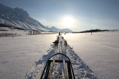 Expedition (s a n y a) Tags: alps expedition norway landscape husky arctic snowcapped adventure trail northern dogsledding tromso