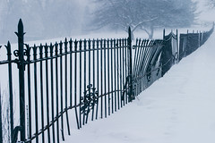 (DhkZ) Tags: winter snow ontario canada tree fence gate snowstorm monastery canon10d kingcity ironfence canon1740mmf4l marylake