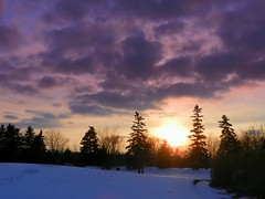 End of Day (Theresa*) Tags: winter snow color january nikons9100