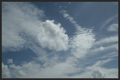 Cloudscape (Zelda Wynn) Tags: weather windyday sunny cloudscape troposphere westauckland zeldawynnphotography