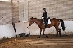 IMG_6381 (Marc van der Molen) Tags: manege paarden noordwijkerhout 2016 dressuur langeveld