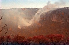 Bushfires Leura (Blue Mountains Local Studies) Tags: bushfire leura