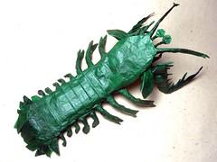 Mantis Shrimp - Andrey Ermakov (Mariano Zavala B) Tags: mantis shrimp andrey ermakov stomatopoda