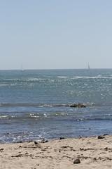 IMG_3721 (armadil) Tags: beach beaches mavericks californiabeaches