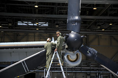 160420-M-XJ793-066 (U.S. Department of Defense Current Photos) Tags: japan earthquake jp yamaguchi marines osprey humanitarian iwakuni mcas disasterrelief mcasiwakuni mv22 usfjrelief2016 disasterhumanitarianassistance