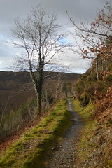 The Trail on the Edge (CoasterMadMatt) Tags: winter mountains wales march countryside photos cymru trail photographs cambria ceredigion arian cambrian nant mynyddoedd 2016 nikond3200 cambrianmountains ponterwyd ridgetop grib bwlch bwlchnantyrarian ridgetoptrail mynyddoeddcambria coastermadmatt coastermadmattphotography winter2016 march2016 bwlchnantyrarian2016 llwbyrygrib llwbyr
