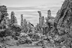 118 - Tufa Forest (Jason Fiori) Tags: california project us unitedstates wife ghosttown bodie 365 goldrush 118 leevining castatepark