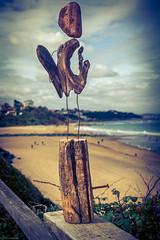 Driftwood creation (Sand of Bidart) Tags: wood sculpture france art beach sand surf raw sony surfing driftwood plage pays basque bois rx bidart lightroom flotte
