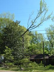 2008-04-02 002 (gr8scott7272) Tags: 20080402