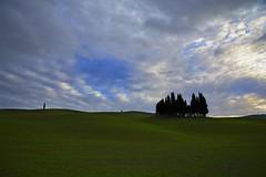 San Quirico d'Orcia, Tuscany. [EXPLORE] (Antonio Cinotti ) Tags: italy landscape nikon italia hills tuscany cypress siena montalcino pienza toscana valdorcia cypresses paesaggio colline cipressi sanquiricodorcia cipressini campagnatoscana d7100 nikon1685 valdorcia nikond7100
