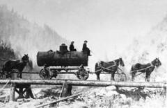 The historic Rogue River (BLMOregon) Tags: history rafting recreation rogue canoeing medford blm rogueriver bureauoflandmanagement departmentoftheinterior wildroguewilderness