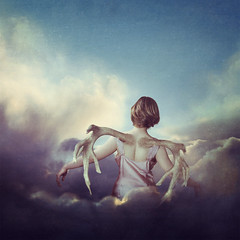 The Weight of My Wings (3/52) (Tarla Walton) Tags: light girl clouds wings antler 52weekproject