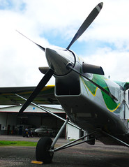 Dragon (Antnio A. Huergo de Carvalho) Tags: verde green yellow grey dragon amarelo pilatus porter cinza drago pc6 prajj turboporter pc6b2h4