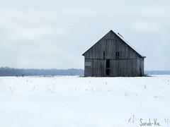(Sarah-Vie) Tags: hiver img7606 vieillegrange hiverauqubec vieillecabane