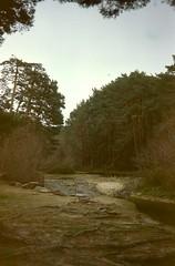 sierra (konndeplus) Tags: dog forest river los quiet air sierra clean bosque segovia da asientos wiz chllin