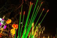 Garden of Light (yellow-cake) Tags: light night canon photography lights 14 lumiere usm 15mm ef luminaire 1100d