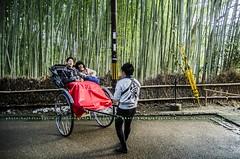 Enjoying the bamboo (Barbara Oggero) Tags: street travel winter cold japan forest kyoto carriage cab streetphotography bamboo nippon streetphoto tradition giappone foresta bamb arashimaya