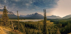 Saskatchewan Valley Panorama (wimvandemeerendonk) Tags: park blue trees wild sky panorama cloud mountain canada color colour nature colors rock clouds contrast forest river landscape outdoors lumix jasper colours bright outdoor scenic basin glacier panasonic alberta valley banff monumental icefield mountainscape icefieldparkway greatphotographers cloudsstormssunsetssunrises wimvandem
