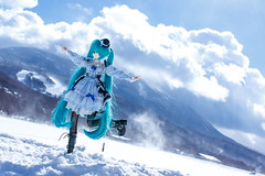 dancing of the sunlight snow (NOZOMUN_SHBVD) Tags: snow toys sigma30mmf14dc dd volks  x5 hatsune miku  dollfiedream bfigure jfigure   hatsunemiku megamiko dd