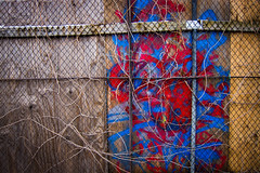 Gated Graffiti (CarusoPhoto) Tags: wood city urban chicago fence john graffiti alley village little neighborhood chainlink gated caruso carusophoto