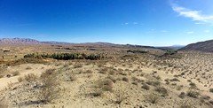 McCallum Trail / Vista Point - Coachella Valley Preserve (Blue Rave) Tags: hike hiking trail iphonephotography iphoneography coachellavalleypreserve deserthike 2016 palmsprings thousandpalms california wideangle panorama panoramic mountains nature