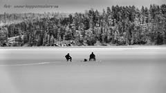 20160213090292 (koppomcolors) Tags: sweden sverige scandinavia värmland varmland koppom skillingmark koppomcolors