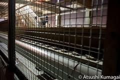 Warm Springs BART Station (kumagai.atsushi) Tags: california ca new bay construction san francisco bart transit area rapid