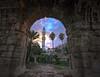 (Azaga ツ) Tags: old city canon libya markos جامع المدينه طرابلس ليبيا tripoly musq قوس القديمه ماركوس
