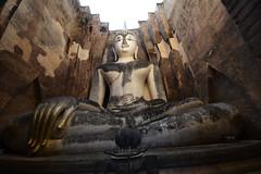 _THN4187 (TC Yuen) Tags: architecture thailand ruins asia southeastasia buddha unesco worldheritage norththailand ancientcapital
