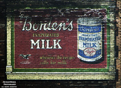 Cow In A Can (DetroitDerek Photography ( ALL RIGHTS RESERVED )) Tags: urban usa building brick abandoned sign wall digital america canon milk midwest closed downtown decay michigan painted ad detroit icon advertisement faded worn 5d weathered february allrightsreserved mkii ghostsign 313 motown evaporated motorcity 2016 bordens nothdr eaglebrand
