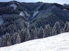 Sur la skiroute No 34 (Jauss) Tags: ski alps montagne alpes sterreich neige alpen tyrol sapin autriche kitzbhel berglft