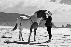 You Can Lead a Horse to Water 08 (ArdieBeaPhotography) Tags: trees two blackandwhite bw horse beach monochrome river bareback sand women couple dunes pair young lagoon pony pohutukawa