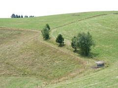 P1020102 (Marc Lamberg) Tags: de marc todtnauberg région halde lamberg muggenbrunn gieshübel stohren trubelsmattkopf