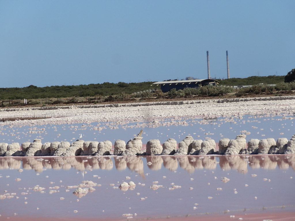 St Kilda. Salt pans turning pink as the salt completes its summer drying season