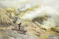 Sulfur Miner in Mt Ijen1 (David_Lazar) Tags: indonesia volcano java sulfur miner ijen